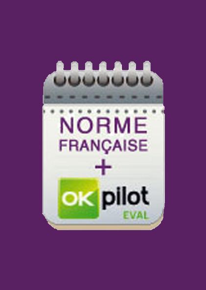 Norme française sur l'accessibilité et l'inclusion des personnes handicapées