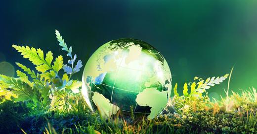 Bannière dossier thématique Environnement pour les réseaux sociaux