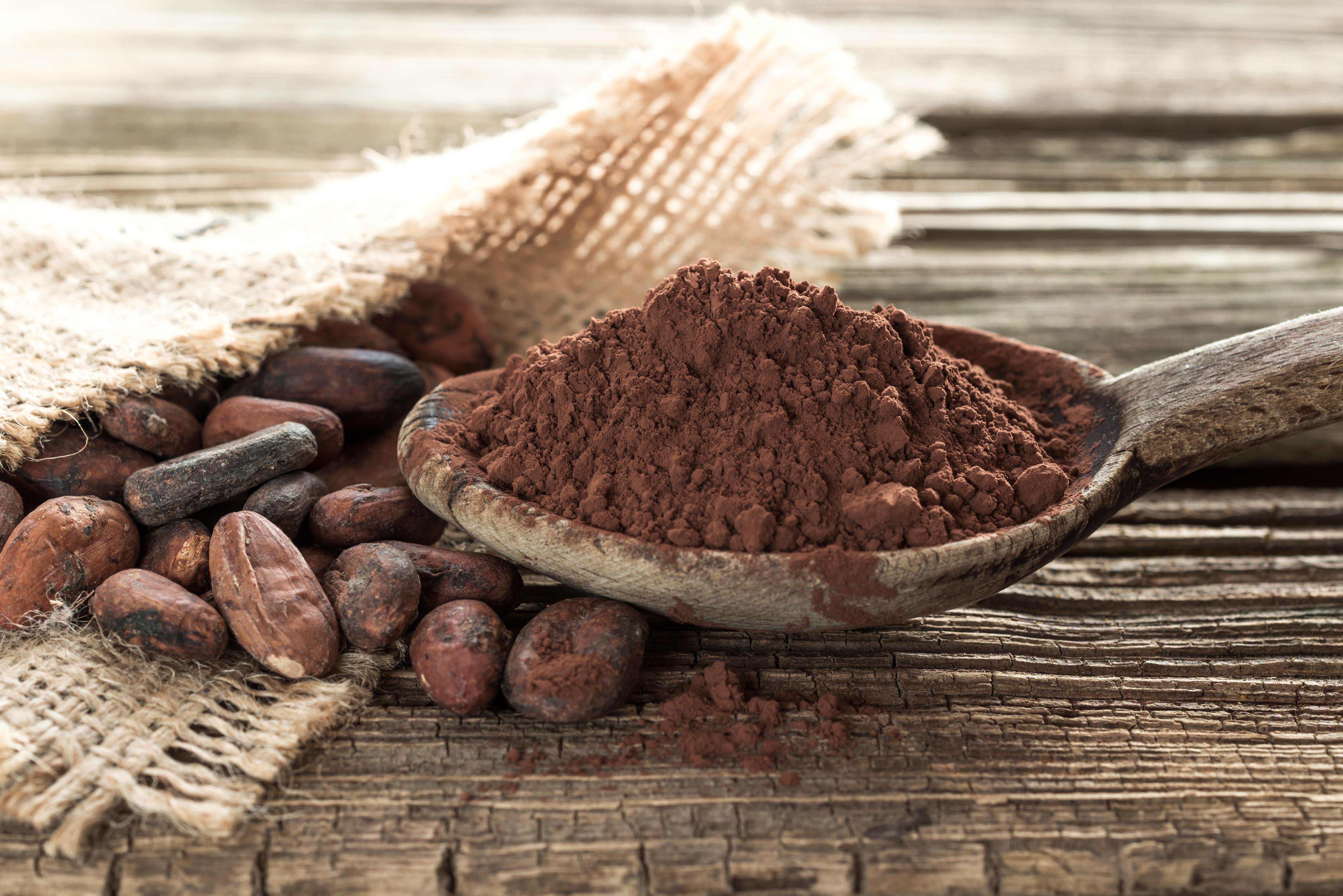 Projet de norme sur le cacao durable
