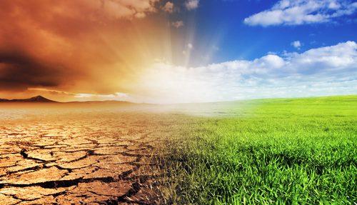 COP 22 : les normes volontaires au service du climat