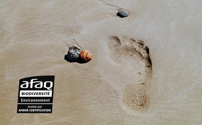 Une emprunte de pas dans le sable