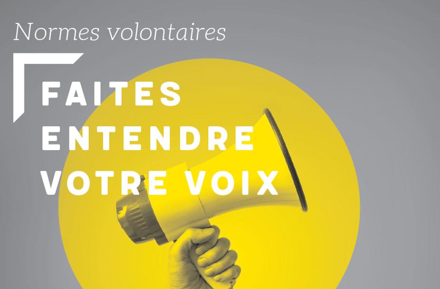 Couverture du flipbook pour comprendre les normes volontaires