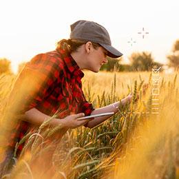 Agroalimentaire : objectif qualité sécurité traçabilité